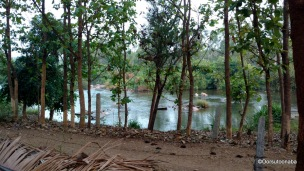 Quiet flows the cauvery