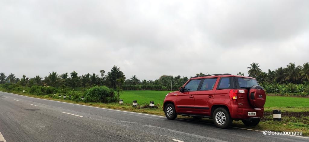 Green fields and empty roads